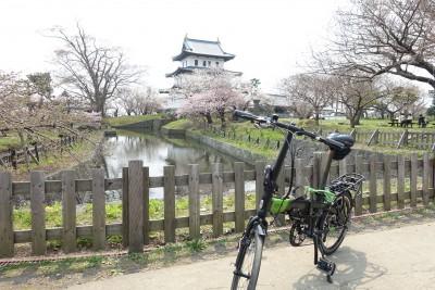 201504_Sakura29