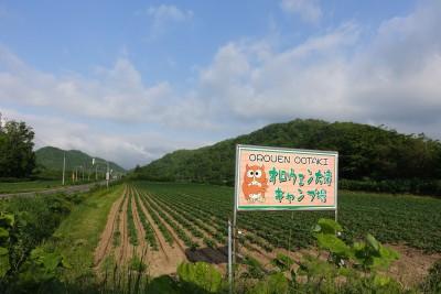 201506-OOTAKI_13