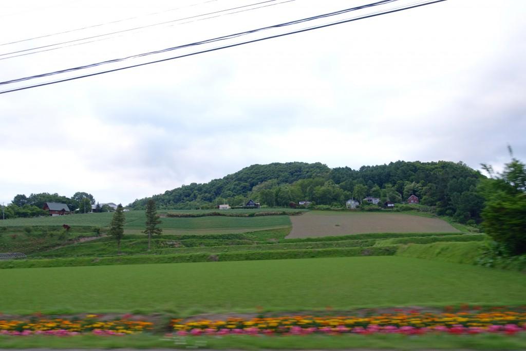 201506-Toya-takrada_179
