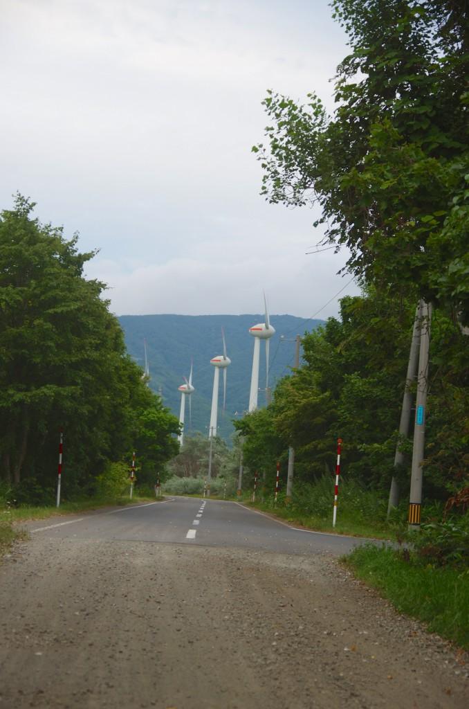201508-suttu_21
