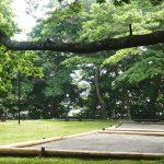 2017-07 新冠町判官館 〜森の段々床が気持ちいい (下見1